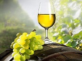 Vinho Verde Portugal_capa
