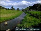 bacia rio cubatao_stcp_Capa