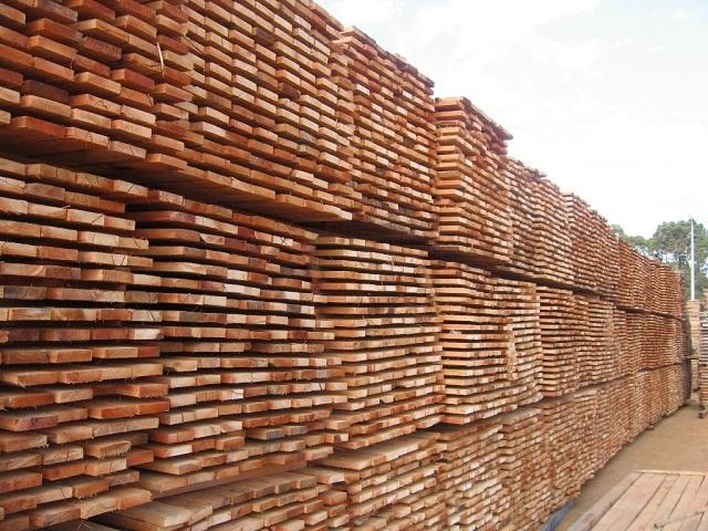 armazem madeira serrada