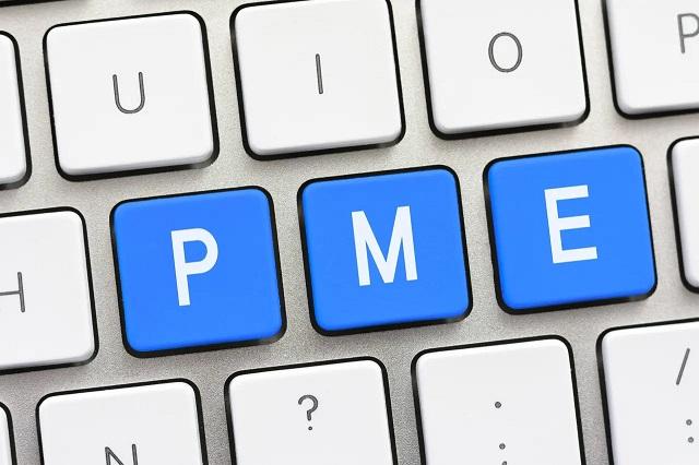 Pequenas e medias empresas PMEs